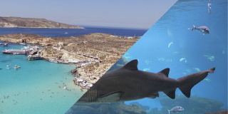 Malta Ausflug Above & Below ab 47€
